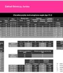 ZG Janina parametry WĘGLA